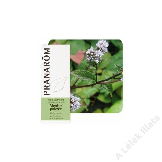 Borsmenta illóolaj (Mentha Piperita) - BIO -10 ml