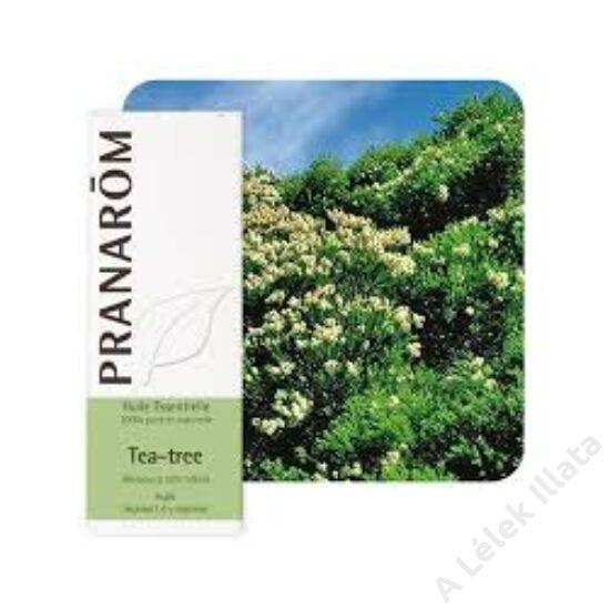 Teafa illóolaj (Melaleuca Alternifolia), 10 ml